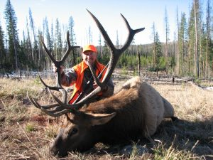 Elk Hunting with Colorado Outfitters.