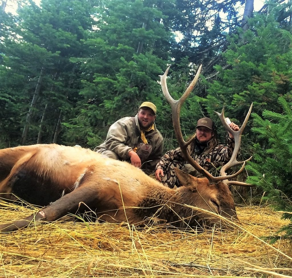 Wilderness Pack-In Hunts – Colorado Outfitters