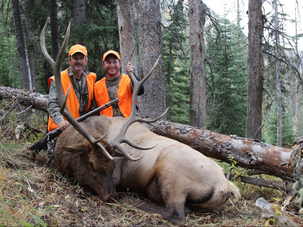 elk_hunt_thumb